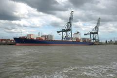 AS Morgana DST_7795 (larry_antwerp) Tags: asmorgana maersk psa europaterminal container 9456953 port        belgium belgi          schip ship vessel        schelde