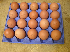 Piggotts Riverside Poultry Farm 20 Large Hen Eggs 2 x 3.39 13092016 29-08-2016 - Box  2 - Egg Weights (Lord Inquisitor) Tags: piggotts hen eggs large heneggs eggcarton 13092016