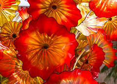 Flower power (Irina1010) Tags: flowers glass chihuly chihulyinthegarden art exhibit red colorful beautiful decor atlantabotanicalgarden canon