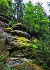 160524_154638_AB_4585 (aud.watson) Tags: europe czechrepublic bohemia decindistrict hrenska riverkamenice kamenicegorge edmundgorge gorge ravine river water rocks rockformation cliffs