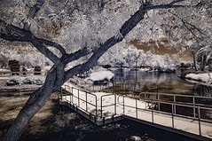 Bridge Over Peaceful Waters (Bill Gracey) Tags: santeelakes ir infrared convertedinfraredcamera infraredphotography highcontrast bridge composition water trees clouds