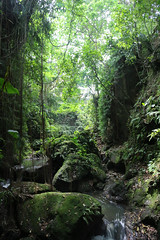 IMG_1307 (oowhatsthatdoo) Tags: bali indonesia monkey forest water
