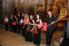 Peregrinos Musicales en la Catedral
