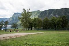 Lago di Bohinj (Sandro Albanese) Tags: slovenia republikaslovenija slovenija europa europe natura nature verde green lago laghi lake lakes montagna mountain mountains bohinj