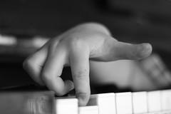 piano keys_4 (letalka) Tags: blackandwhite monochrome depthoffield music pianokeyboard piano stringedinstrument hand smog texture