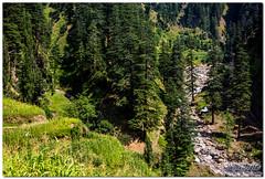 1120 (Mobeen Mazhar) Tags: road pakistan lake nature trekking trek village hiking top north pass valley kashmir areas northern nuri gali jammu ajk noori azad neelum ratti rattigali domail dawarian dowarian nuritop doarian burwai