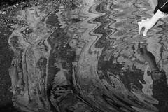 (Maieutica) Tags: bw water rain reflex kid child hand bn mano acqua pioggia riflesso bambino pozzanghera