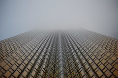 Wall of Gold (cookedphotos) Tags: morning toronto fog skyscraper gold downtown financialdistrict royalbankplaza
