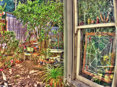 Haight District Garden with Stained Glass Window, HDR (Walker Dukes) Tags: sanfrancisco california wood pink flowers blue brown black tree green glass beautiful photoshop fence gold gnome chair flora sill purple head buddha gray pots photograph sfbayarea horticulture fecund photomatix abigfave