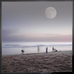little ghosts playing on the beach (Jokke's photos) Tags: moon playing beach strand rising twilight playa luna montage photomontage layers joris jugando blend spelen cs3 maan littleghosts theresabadmoonontherise spookjes woutters pequeosfantasmas