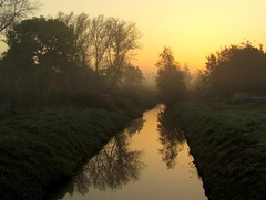 early morning light (Foto Dominic) Tags: morning mist reflection fog sunrise nevel ochtend zonsopgang mygearandme mygearandmepremium mygearandmebronze mygearandmesilver mygearandmegold mygearandmeplatinum mygearandmediamond fotodominic rememberthatmomentlevel4 rememberthatmomentlevel1 rememberthatmomentlevel2 rememberthatmomentlevel3 rememberthatmomentlevel7 rememberthatmomentlevel9 rememberthatmomentlevel5 rememberthatmomentlevel6 rememberthatmomentlevel8 rememberthatmomentlevel10