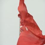 "Flag in Osmaniye <a style=""margin-left:10px; font-size:0.8em;"" href=""http://www.flickr.com/photos/59134591@N00/8363964839/"" target=""_blank"">@flickr</a>"