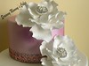 Fantasy Flower Wedding Cake 1 (Scrummy Mummy's Cakes) Tags: white weddingcake twotier fantasyflower pearlpink jeweltrim