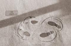 The Twist (Eridony) Tags: chattanooga hamiltoncounty tennessee northshore sidewalk pavement art