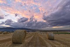 Wheels of fire (Rafael Dez) Tags: espaa larioja santurdejo paisaje filtro verano nubes atardecer sunset fardos rafaeldez