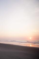 (gwoolston) Tags: sunrise birds ocean jerseyshore stoneharbor waves