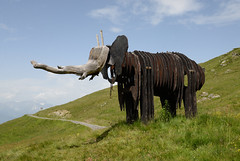Switzerland (nicnac1000) Tags: switzerland valais verbier elephant elephantwalk zakove alps alpes