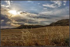 Desde la cuneta (Fernando Fornis Gracia) Tags: espaa aragn zaragoza monegros piedratajada valpalmas puestadesol sunset paisaje campos landscape nubes cielo naturaleza contraluz