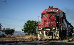 Ferrocarril (Olimpia_Real) Tags: ferrocarril tequila express ferromex transporte canon mexico home