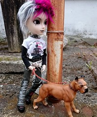 best friends (claudine6677) Tags: taeyang horizon groove doll june planning dog puppe hund