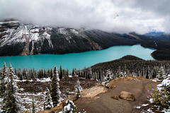 Peyto Lake (~Marty) Tags: alberta canada banff national park mountains peyto lake icefieldsparkway lakepeyto