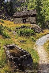 Valle Antrona, Piemonte (filippi antonio) Tags: valleantrona antrona piemonte italy italia montagna mountain alpi baita fonte mountainhouse paesaggio paesaggialpini landscape itinerari trip tourism
