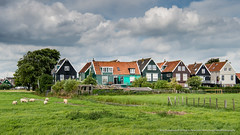 Postcard Greetings From Marken (RudyMareelPhotography) Tags: europe gouwzee ijselmeer marken netherlands noordholland waterland zuiderzee flickrclickx flickr ngc