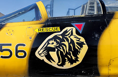 Tiger Meet (pic_snapper) Tags: canadianwarplaneheritagemuseum cwhm noseart hamilton ontario canada cf104 starfighter