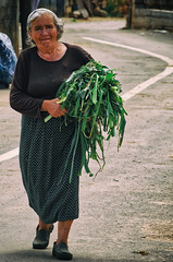 All Along The Line It Is Hard To Harvest (Alfred Grupstra Photography (bussy until 30 octobe) Tags: crop harvest line streetlife woman pustec qarkuikors albani al