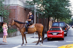NYC01510 (Henry Westheim Photography) Tags: newyork unitedstates usa mounted police officer man person horse newyorkcity manhattan urban cities outdoors people street talking cell phone mobile telephone