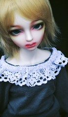 Sweet Lace (shibya(   ` )) Tags: ball doll little monica honey harmony bjd lm jointed irin