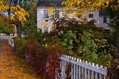 The Daniel Putnam House (Bud in Wells, Maine) Tags: autumn fall fence ma pentax massachusetts newengland historic topaz k7 northreading