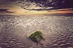 Half Moon Bay (John Ormerod) Tags: light sunset sky seascape colour beach water rock clouds evening seaside sand nikon day dusk sigma lancashire ripples 1020 morecambebay heysham d7000 pwpartlycloudy