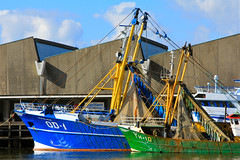 Scheveningen harbor (oewimmie) Tags: city blue sea sun white fish color green water clouds canon grey boat town fishing fisherman europe ship scheveningen thenetherlands fishingboat fishmarket thehague fishingvillage canoneosd60 rememberthatmomentlevel1