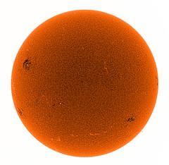 Sun_ICC_Y800_DMK23G445_2012-10-11_13-50_UT_neg2 (Admiral_M) Tags: sun halpha ls60tha