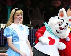 Alice and the Rabbit (EatThisLight) Tags: cute rabbit smile heart florida tea alice disney disneyworld waltdisneyworld teacup wonderland magickingdom fantasyland aliceinwonderland whiterabbit