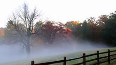 Morning Mist (trek22-) Tags: morning autumn mist canon pennsylvania 7d westchester trek22