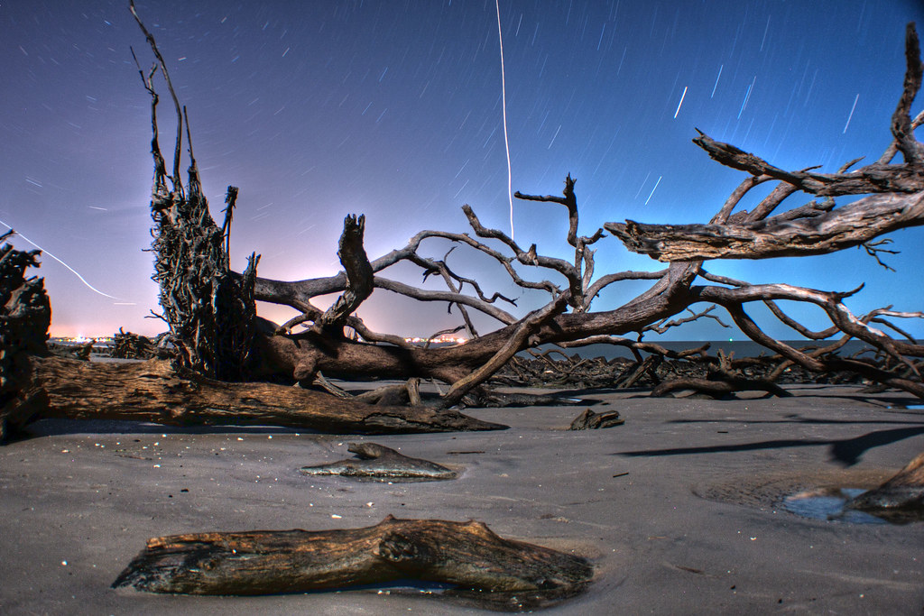 Driftwood Beach, Jekyll Island Georgia by BSC Photography, on Flickr