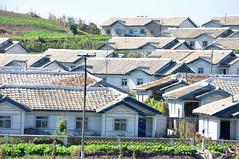 DSC_0334 (yackshack) Tags: travel nikon asia asien north korea explore corea dprk coreadelnorte nordkorea d5000 coredunord coreadelnord   dvrk  pyongyangbeijing