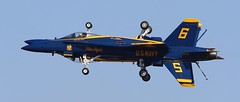Blue Angels Mirrored (Bill Jacomet) Tags: show blue field wings texas air over houston airshow angels 2012 ellington