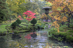 "Japanese Autumn • <a style=""font-size:0.8em;"" href=""http://www.flickr.com/photos/45090765@N05/8135488576/"" target=""_blank"">View on Flickr</a>"