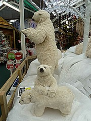 Polar bear display1 (BowBelle51) Tags: santa decorations train reindeer lights penguins fireplace fairground donkey carousel robins polarbear nativity snowglobe eskimo baubles meerkats fircones