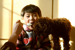 _MG_3762 (baobao ou) Tags: family boy kids funny asia child 52weeks familygetty2011