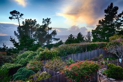 California Garden Sunset (Joe Josephs: 3,166,284 views - thank you) Tags: california sunset sunsets cambria pinetrees californiacoast californiacentralcoast cambriacalifornia pineforests joejosephs joejosephsphotography nikond800e copyrightjoejosephs nikon2485vrii copyrightjoejosephs2013