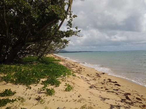 Wongaling Beach near 22 Reid Road
