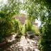 "Promenade dans les jardins de l'Abbaye de Valsaintes • <a style=""font-size:0.8em;"" href=""http://www.flickr.com/photos/90528120@N02/8390263346/"" target=""_blank"">View on Flickr</a>"