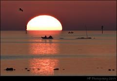 Fishing at Sunset - Hudson FL 1/26/13 - crop (Nick Fedele) Tags: sunset red orange sun fish reflection gulfofmexico nature water colors beautiful set