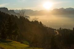Rheintal (andreaskoeberl) Tags: trees sunset mountains alps austria dornbirn sterreich nikon f