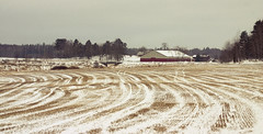 Curves (DavidAndersson) Tags: winter house snow field pattern sweden farm curves vnersborg tamron18200f3563