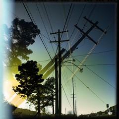 Timber ... (ZNash_) Tags: noflash hipstamatic salvador84lens dylanfilm